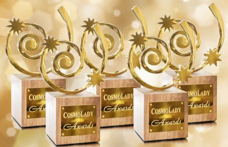 Лауреаты десятой юбилейной церемонии награждения COSMO LADY AWARDS
